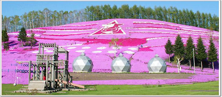 小小的芝櫻開滿在面積九萬平方公尺廣大的斜面上,像是粉紅色與白色交織的地毯。 如遇天候因素(下雨、颳風或氣溫)而凋謝或未綻開;逢櫻花觀賞時期,觀光景點會隨之調整或前往原景點 純欣賞,請見諒,謝謝。  【必遊景點】 『柳月蛋糕工房』 柳月秉持著『溫柔地對人與環境』的目標往前邁進,並且導入更為先進的食品衛生管理系統,讓大家都能夠 享用到更加安全及高品質的美味甜品。 『池田葡萄酒城』 依山而建的仿歐州中古時期建築模式的酒場,極具特色,若您酒量夠盡可暢飲一番。 『釧路濕原』 全日本最大的濕原,也是全國第28個
