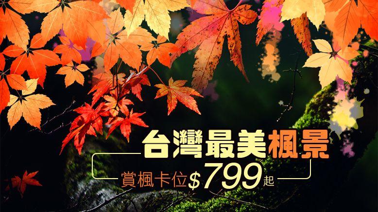 台灣最美楓景 賞楓卡位$799起