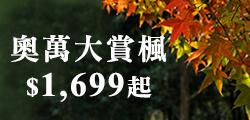 (主題旅遊)奧萬大賞楓 $1,699起