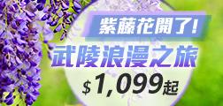 (主題旅遊紫藤花開了!武陵浪漫之旅 $3,200起