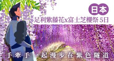 《日本》足利紫藤花x富士芝櫻祭 5日 手牽手一起漫步在紫色隧道