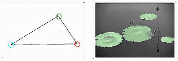 常用较活泼的斜三角方式构图,常用於拍花朵、植物.-摄影基本功