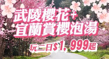 (團體)武陵櫻花+宜蘭賞櫻泡2日$1,999起
