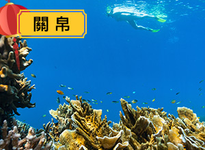 (圖)新春瘋帛琉享優惠 ◆深潛浮潛一次搞定 ◆悠遊大海 早鳥第二人折2千 ◆指定行程送帛琉老爺酒店按摩