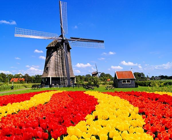 「荷蘭」的圖片搜尋結果